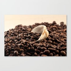 Shell on coffee Canvas Print