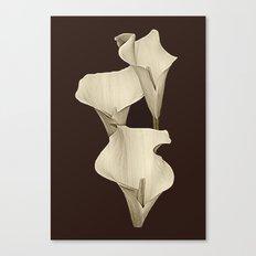 Cream Calla Lilly. Canvas Print
