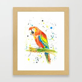 Parrot (Scarlet Macaw) - Watercolor Painting Print Framed Art Print