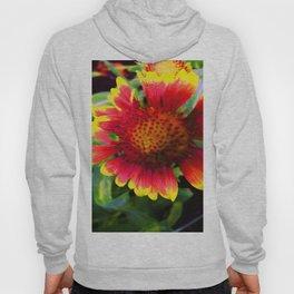 Halo Blanket Flower Hoody