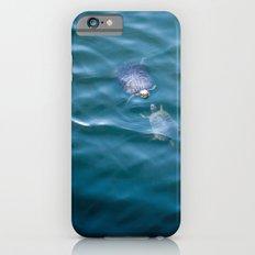 Turtles in love iPhone 6s Slim Case