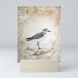 Plover Mini Art Print