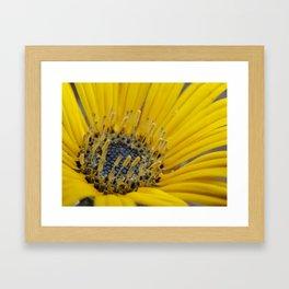 Always Sunny Framed Art Print