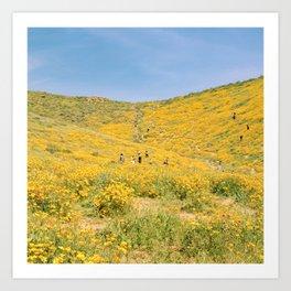 Lake Elsinore poppy fields Art Print