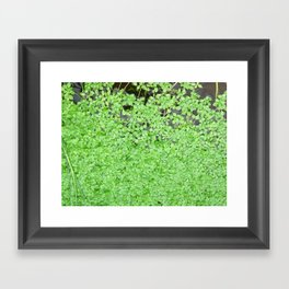 Floating Nature Framed Art Print