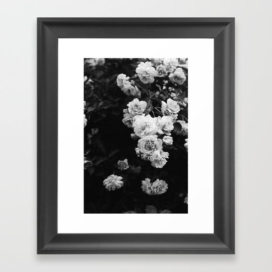 Tumbling Roses Framed Art Print