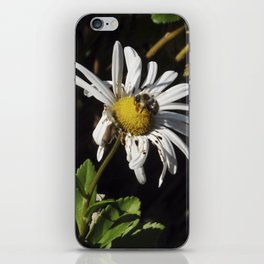 ambivalence daisy iPhone Skin