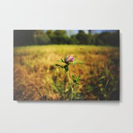 Flowers - WildFlower Metal Print