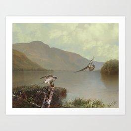 Falcons at Flagstaff Lake Art Print