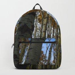 Trembling Aspen Trees in Jasper National Park Backpack