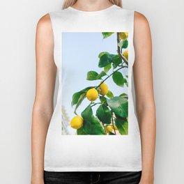Amalfi Coast Lemons III Biker Tank