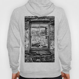 Window with a view Hoody