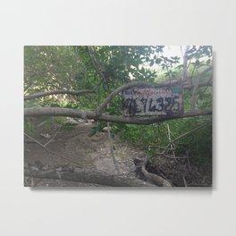 lost car Metal Print