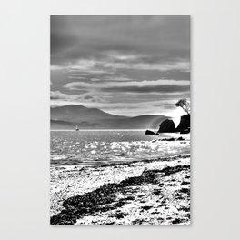 Light.  Canvas Print