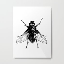 black and white fly Metal Print