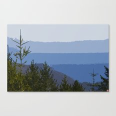 Dipsea Trail Canvas Print