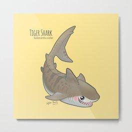 Tiger Shark (Galeocerdo cuvier) Metal Print