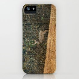 Buck At Pinson Mounds iPhone Case