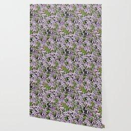 Purple Flowers Galore Wallpaper