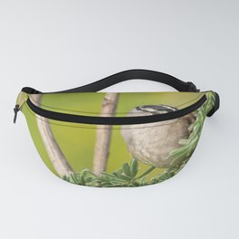 Sparrow on Lupine Fanny Pack
