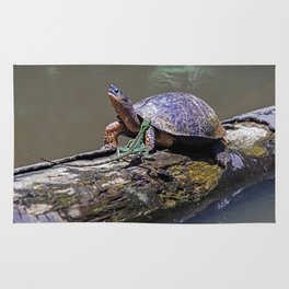 Lizard and River Turtle at Tortuguero Rug