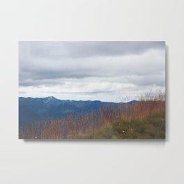 Hurricane Ridge, Washington Metal Print