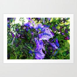 Abstracted Purple Petunias Art Print