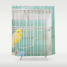 Yellow Bird against Turquoise Wall Shower Curtain