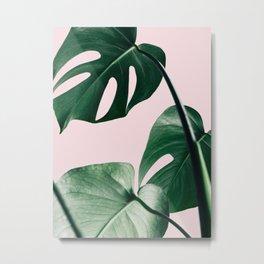 Plant, Green, Monstera, Leaf, Pink, Minimal, Trendy decor, Interior, Wall art, Photo Art Print Metal Print
