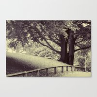 bath Canvas Prints featuring Bath by JoFar