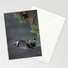 PEREGRINE FALCON ON POST Stationery Cards