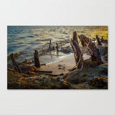 Stranded and Moody Canvas Print