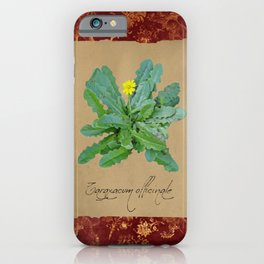 Herbal Apothecary: Dandelion iPhone Case