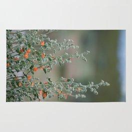 Desert Wildflower - 2 Rug