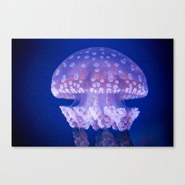 Jellyfish Mushroom Bloom - Photography Canvas Print