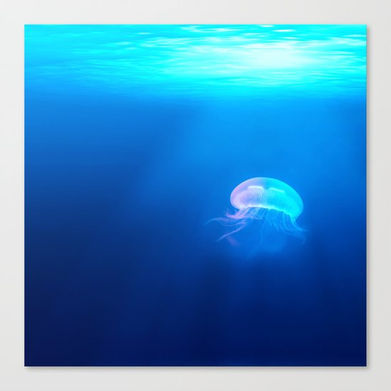 Jellyfish are beautiful Canvas Print