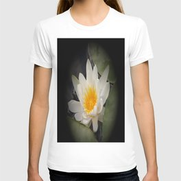 White Waterlily On A Dark Background #decor #society6 T-shirt