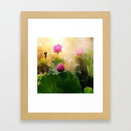 Pink Lotus Flower Framed Art Print