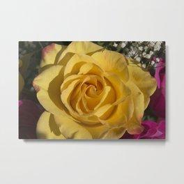 Valentine's Day Roses 23 Metal Print