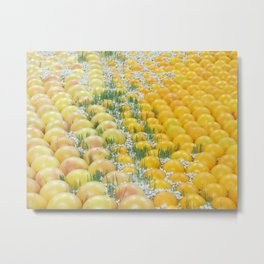 Oranges and Seeds Metal Print
