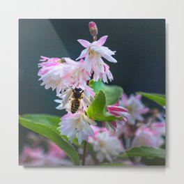 Scent of Spring Metal Print