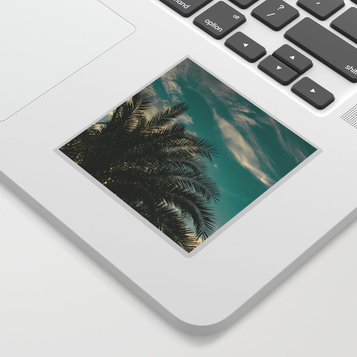 Palms on Turquoise - II Sticker