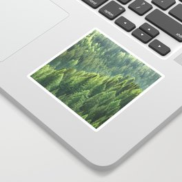 Pine tree forest in the morning fog Sticker
