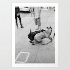 San Francisco #13 Art Print