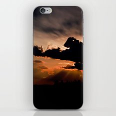 summer sunset iPhone & iPod Skin