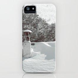 it's winter iPhone Case