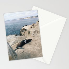 Sun Bathing Seal Stationery Cards