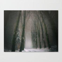 A Woodland Fantasy Canvas Print