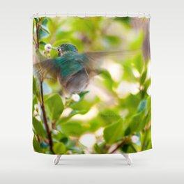 Hummingbird Summer Blur photography by CheyAnne Sexton Shower Curtain