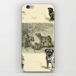 PUG DOGS Illustration iPhone Skin